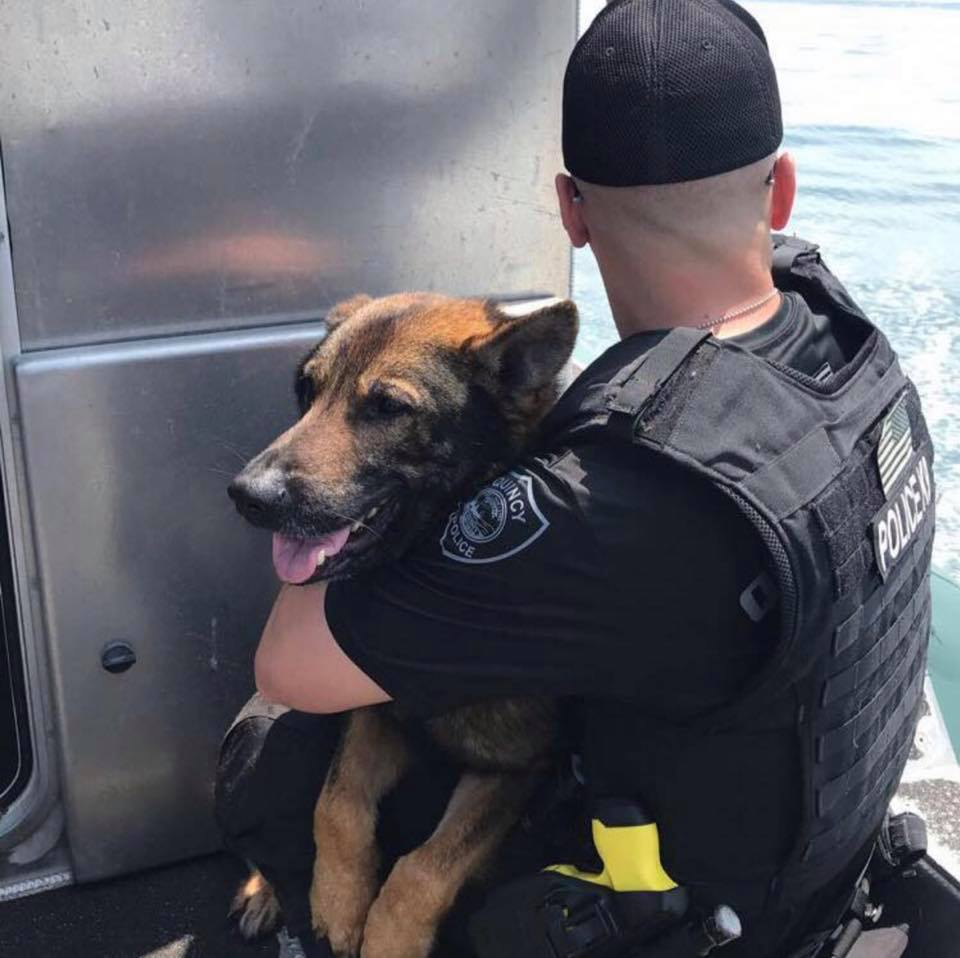 Quincy Police Dog Dies After Medical Emergency